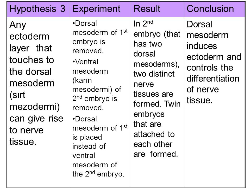 Hypothesis 3 Experiment Result Conclusion