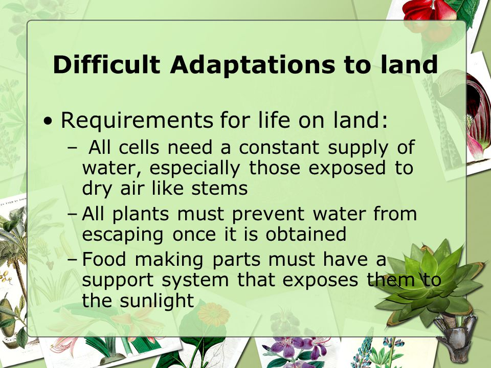 Difficult Adaptations to land