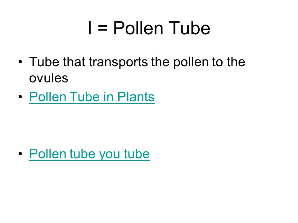 I = Pollen Tube Tube that transports the pollen to the ovules