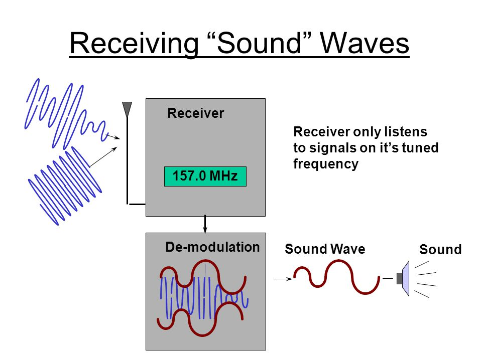Receiving Sound Waves