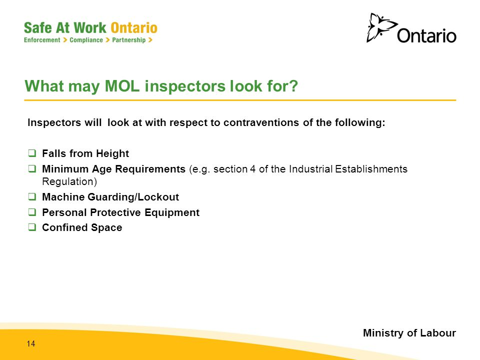 What may MOL inspectors look for