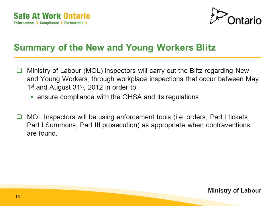 Summary of the New and Young Workers Blitz