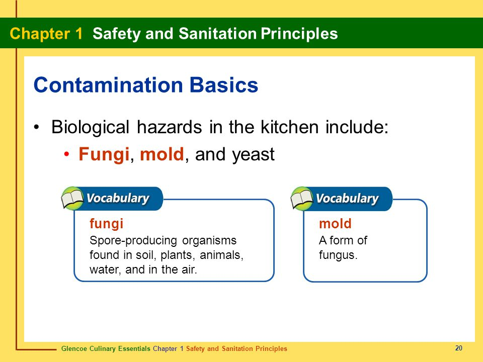 Contamination Basics Biological hazards in the kitchen include: