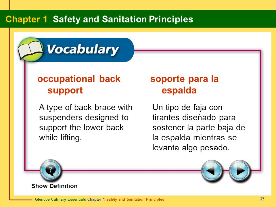occupational back soporte para la support espalda