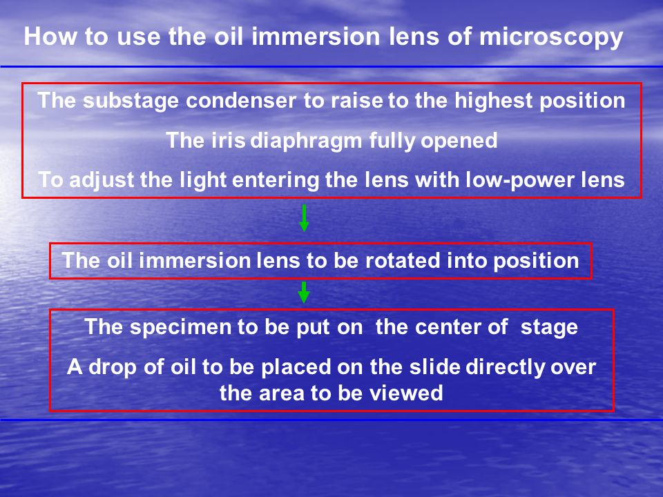How to use the oil immersion lens of microscopy