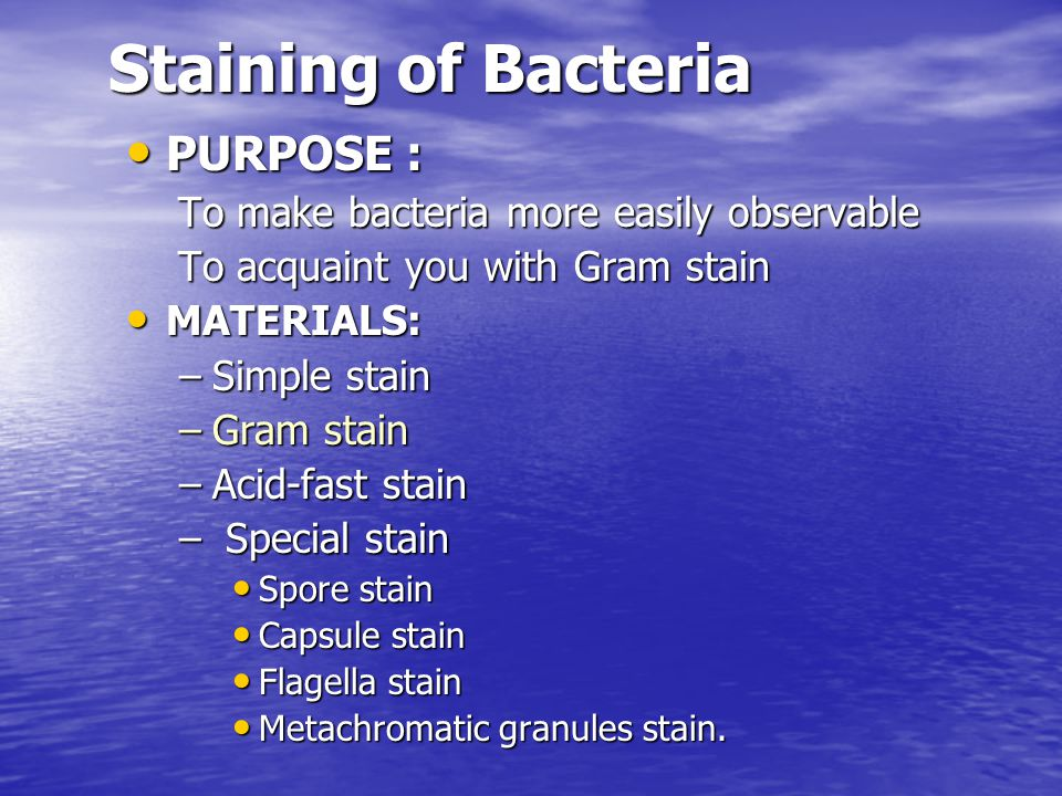 Staining of Bacteria PURPOSE : To make bacteria more easily observable