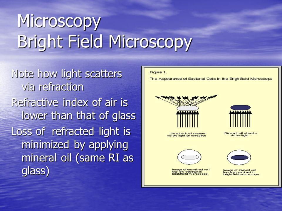 Microscopy Bright Field Microscopy
