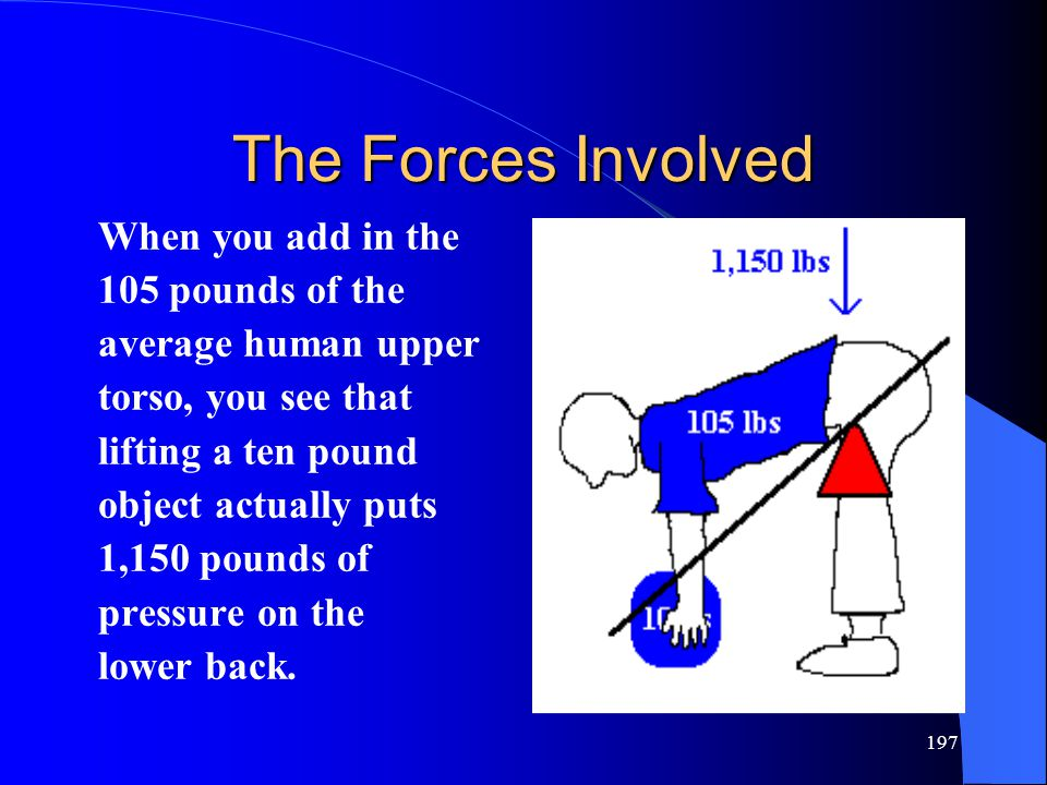 The Forces Involved When you add in the 105 pounds of the