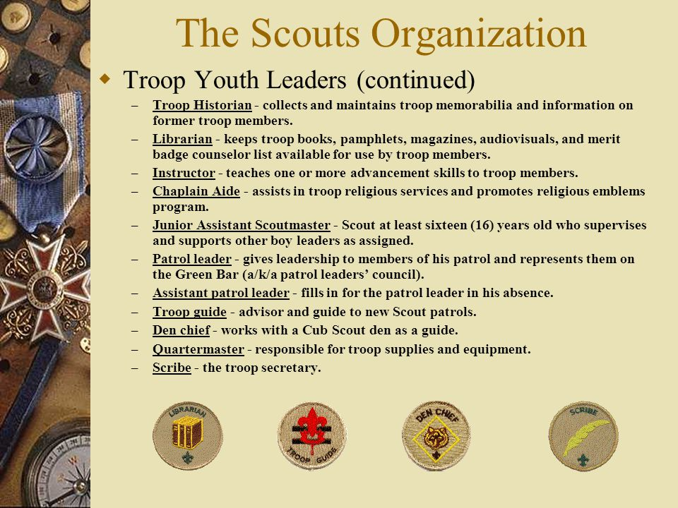 The Scouts Organization