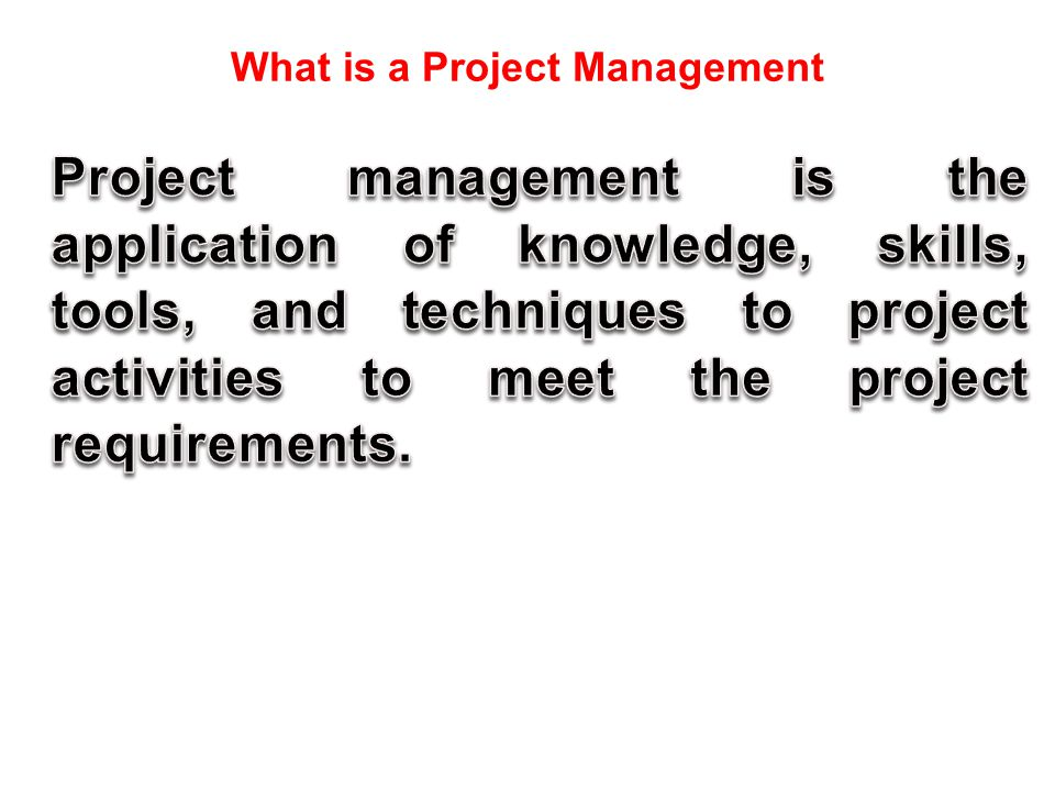 What is a Project Management