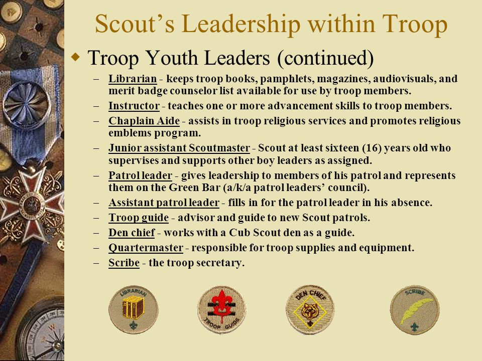 Scout's Leadership within Troop