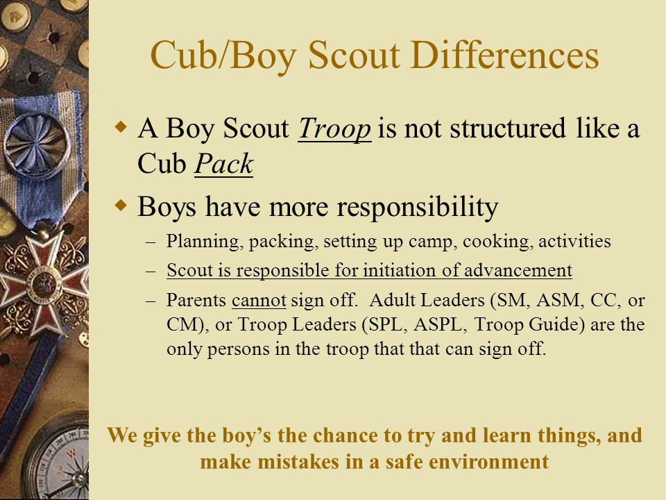 Cub/Boy Scout Differences