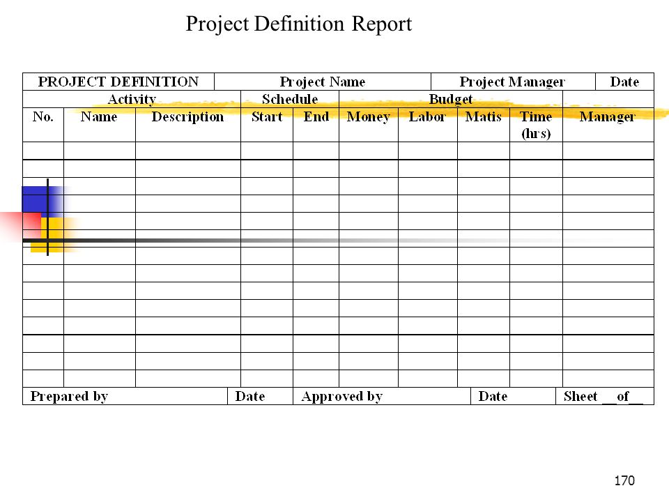 Project Definition Report