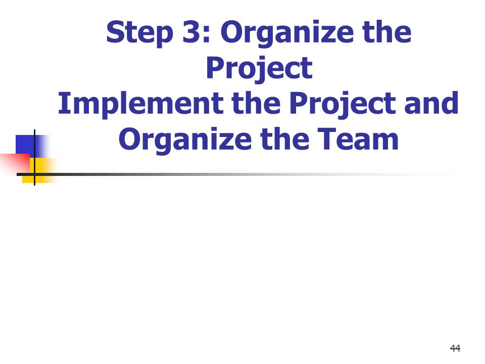 Step 3: Organize the Project Implement the Project and Organize the Team
