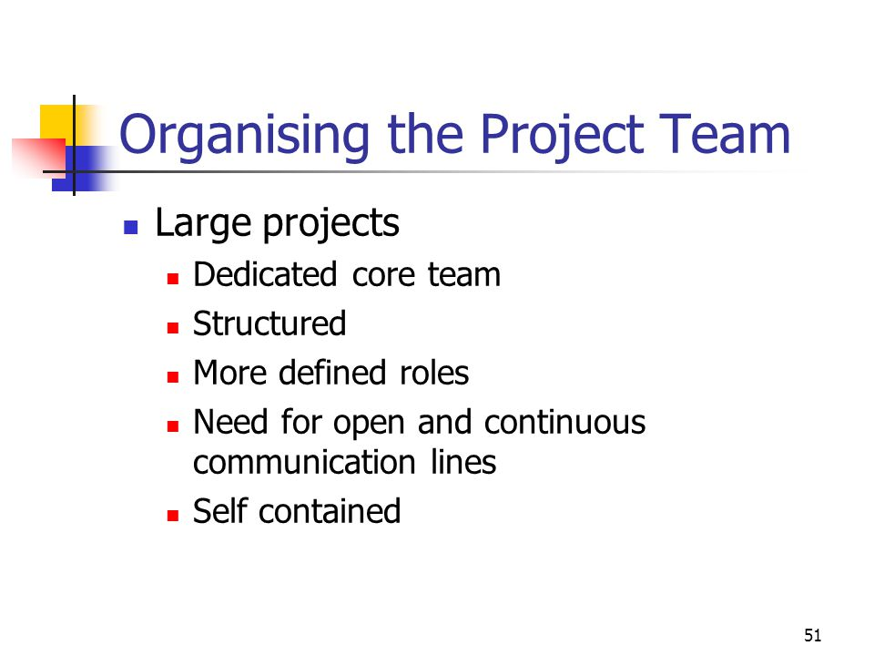 Organising the Project Team