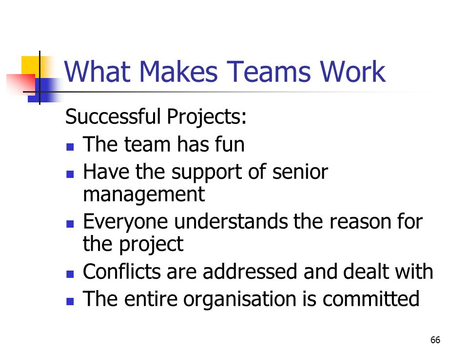 What Makes Teams Work Successful Projects: The team has fun