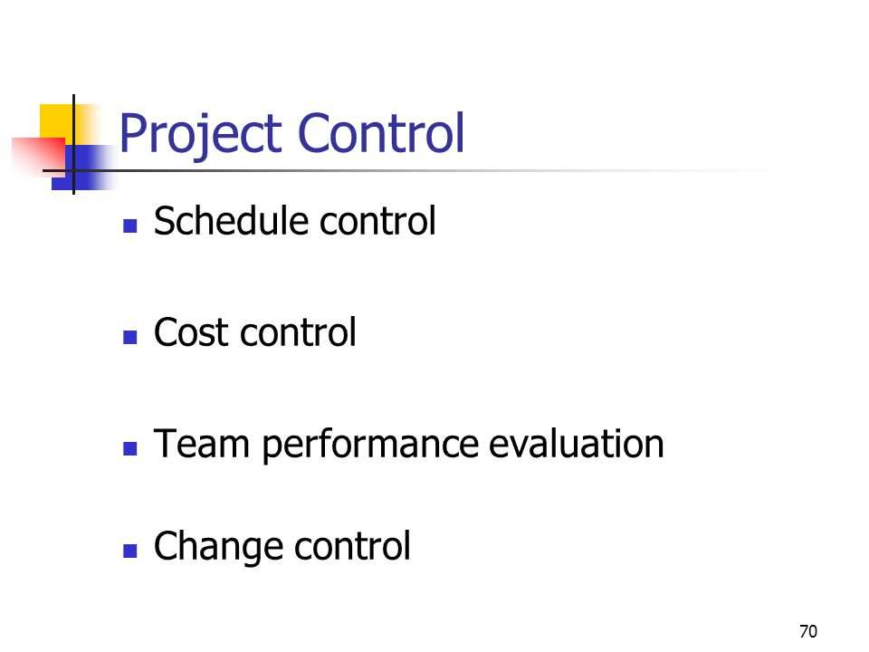 Project Control Schedule control Cost control
