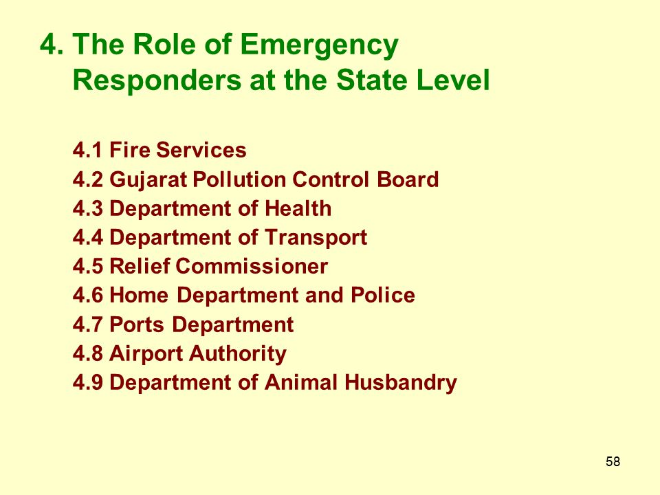 4. The Role of Emergency Responders at the State Level
