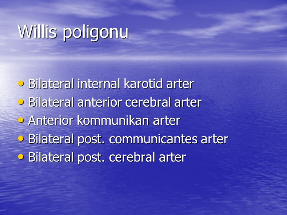 Willis poligonu Bilateral internal karotid arter