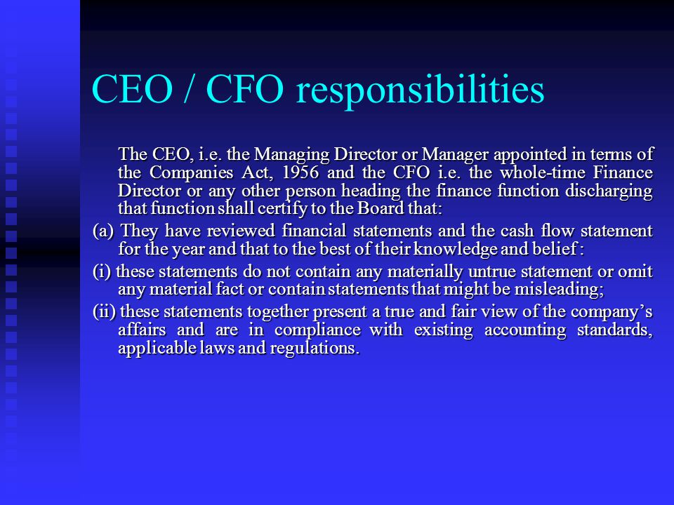 CEO / CFO responsibilities