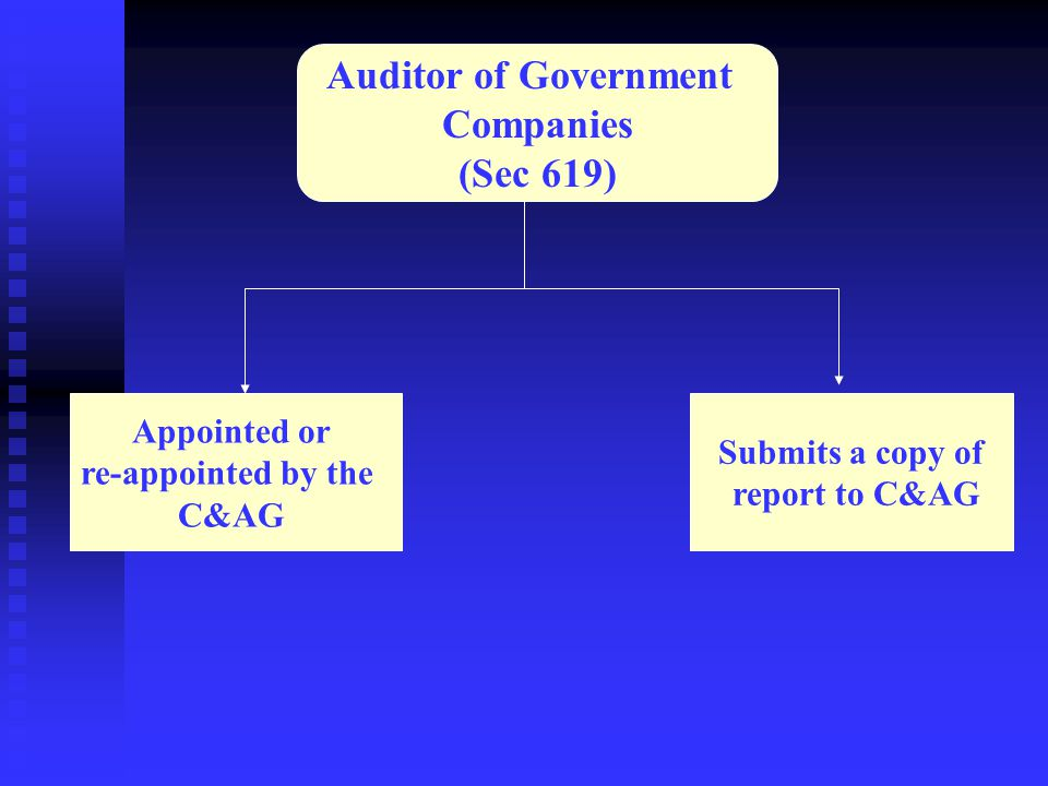 Auditor of Government Companies (Sec 619)