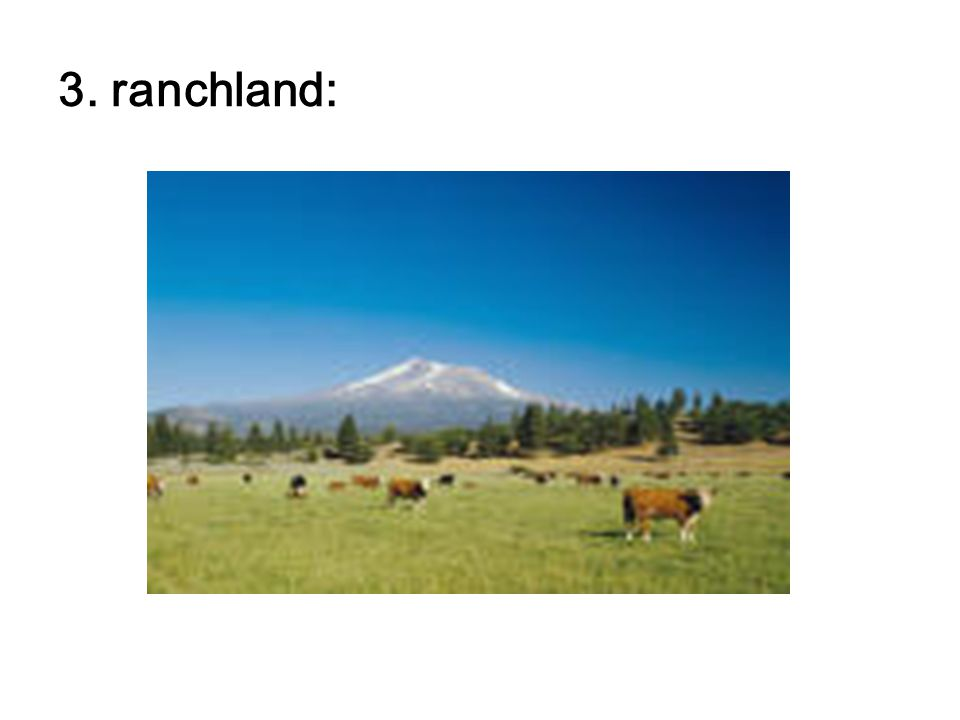 3. ranchland: