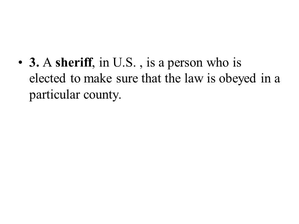 3. A sheriff, in U.S.