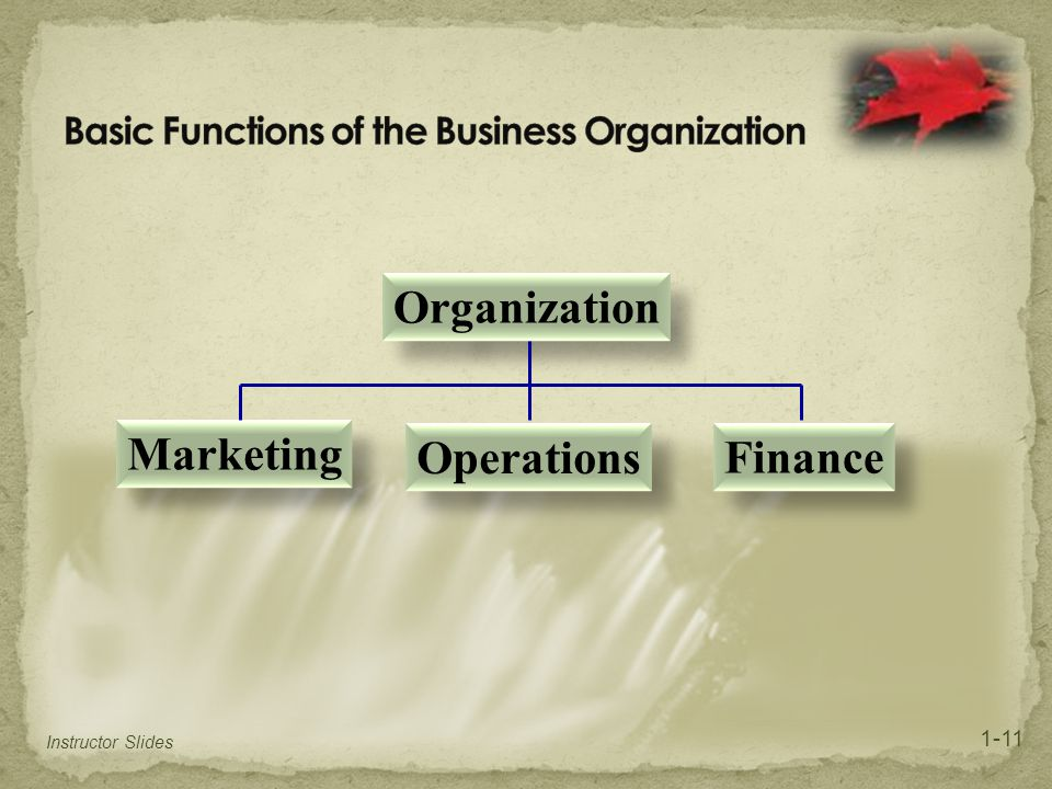 Basic Functions of the Business Organization