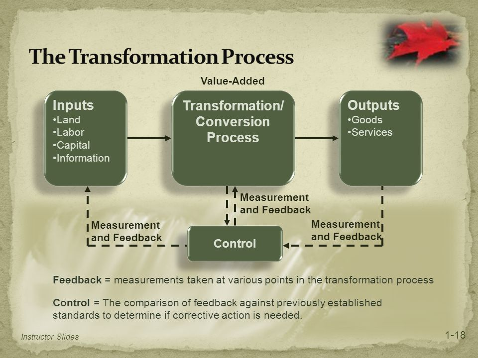 The Transformation Process