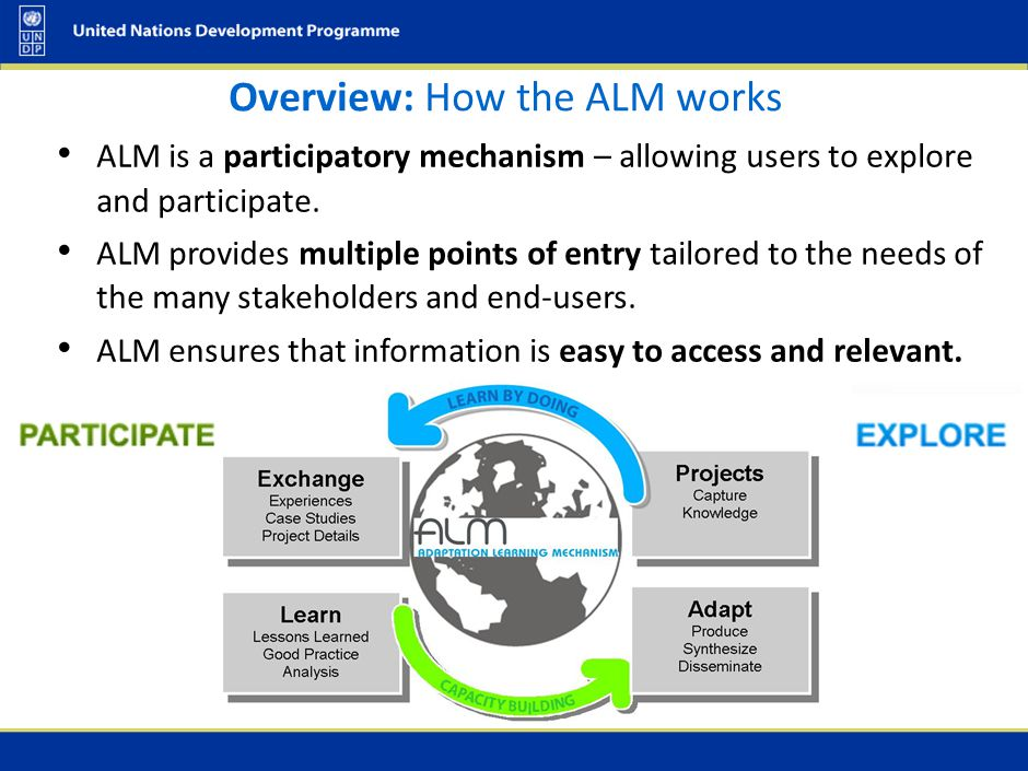 Overview: How the ALM works