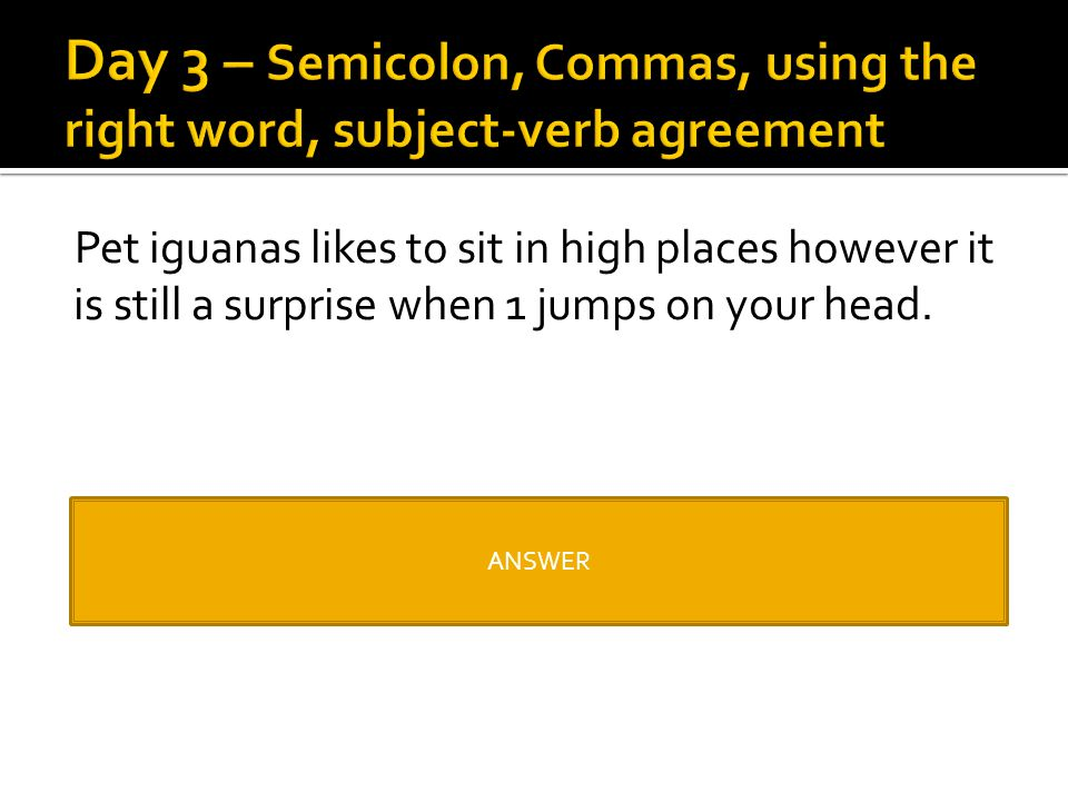 Day 3 – Semicolon, Commas, using the right word, subject-verb agreement