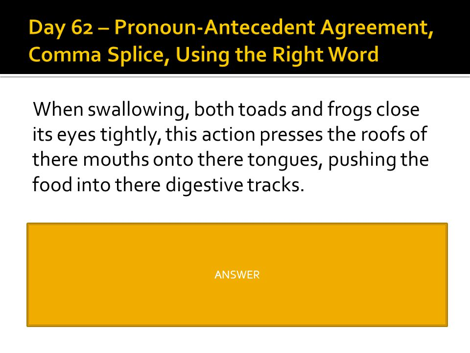 Day 62 – Pronoun-Antecedent Agreement, Comma Splice, Using the Right Word