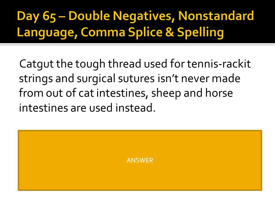 Day 65 – Double Negatives, Nonstandard Language, Comma Splice & Spelling
