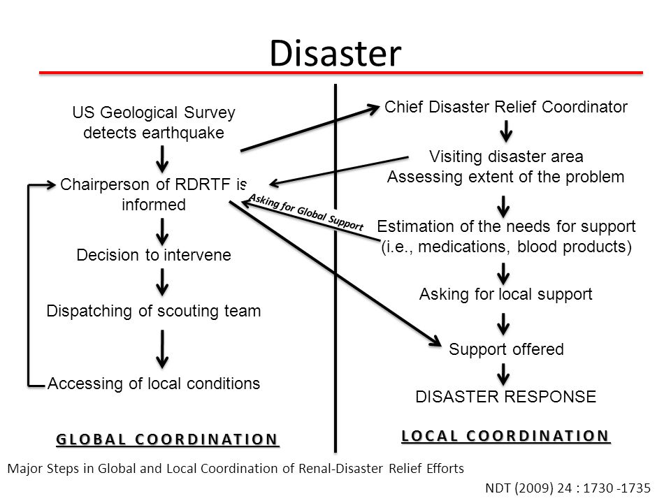 Disaster Chief Disaster Relief Coordinator