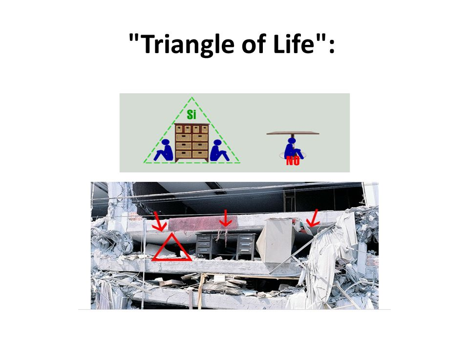 Triangle of Life : OR Try the triangle of life either way let us all be safe