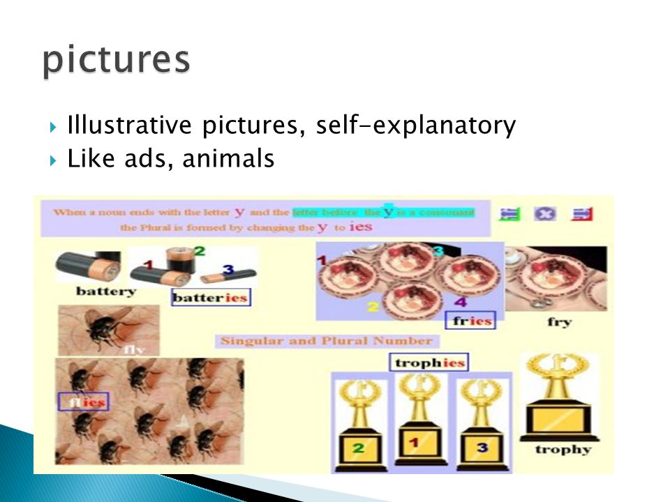 pictures Illustrative pictures, self-explanatory Like ads, animals