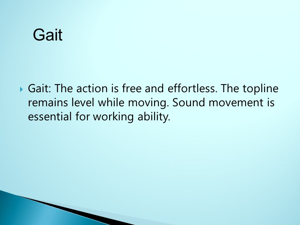 Gait Gait: The action is free and effortless. The topline remains level while moving. Sound movement is essential for working ability.