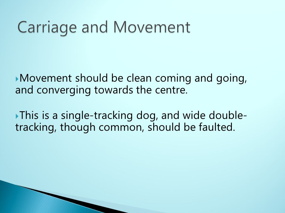 Carriage and Movement Movement should be clean coming and going, and converging towards the centre.