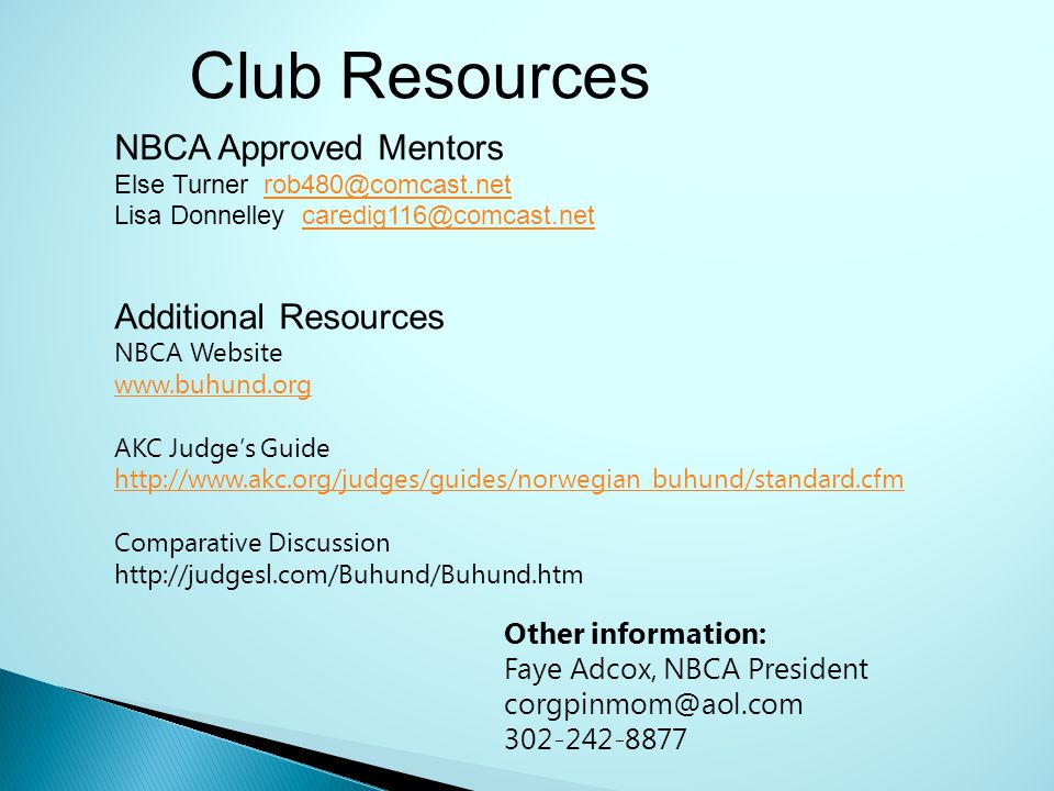 Club Resources NBCA Approved Mentors Else Turner rob480@comcast.net