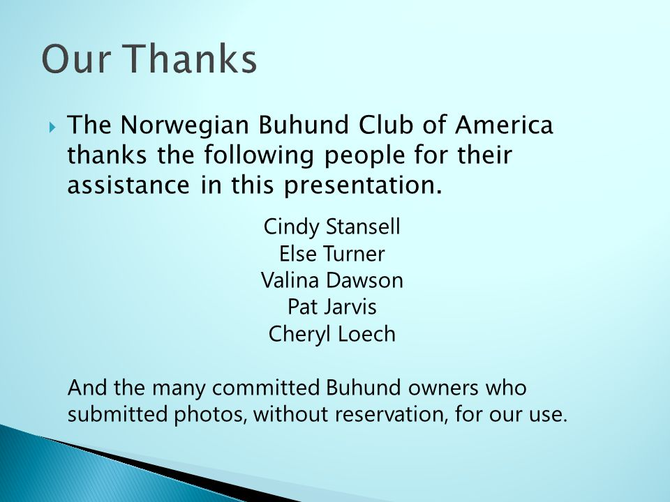 Our Thanks The Norwegian Buhund Club of America thanks the following people for their assistance in this presentation.