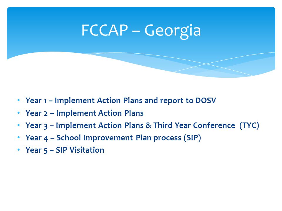 FCCAP – Georgia Year 1 – Implement Action Plans and report to DOSV
