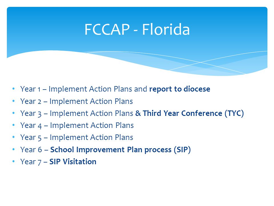 FCCAP - Florida Year 1 – Implement Action Plans and report to diocese