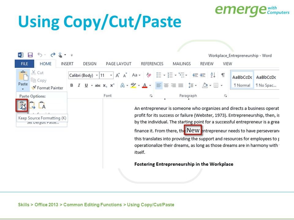 Using Copy/Cut/Paste Skills > Office 2013 > Common Editing Functions > Using Copy/Cut/Paste