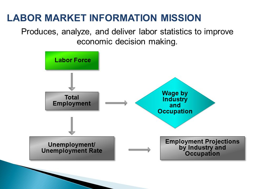 LABOR MARKET INFORMATION MISSION