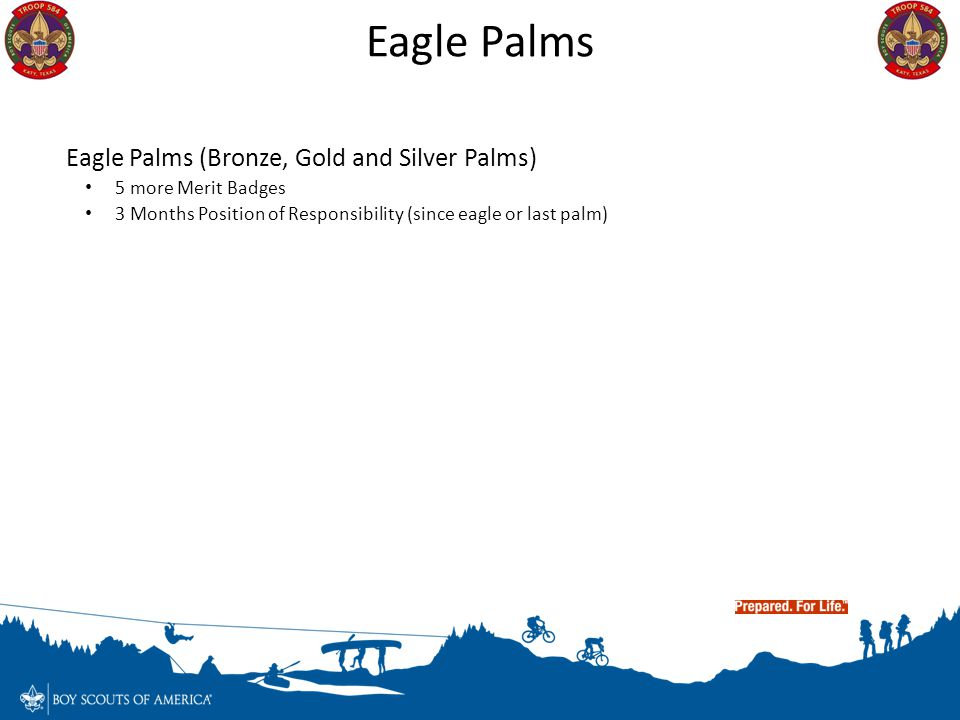 Eagle Palms Eagle Palms (Bronze, Gold and Silver Palms)