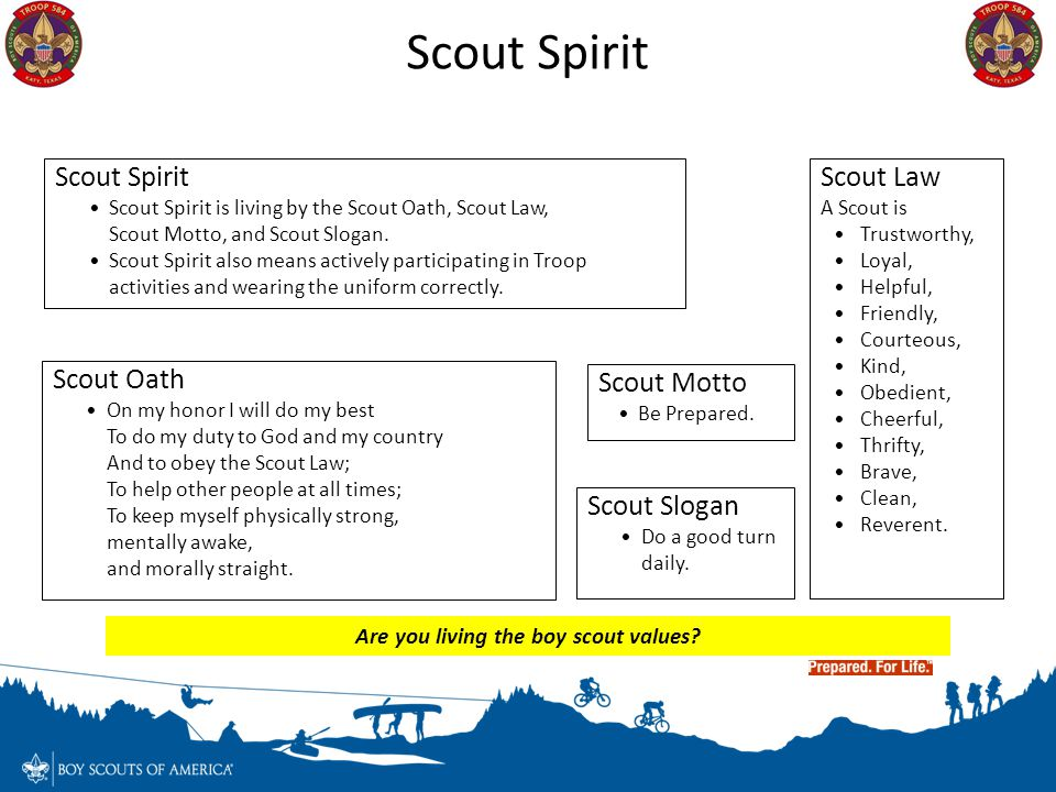 Are you living the boy scout values