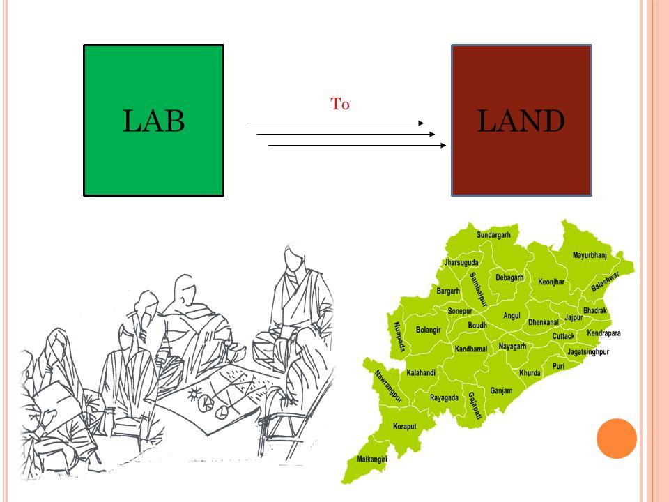 LAB LAND To