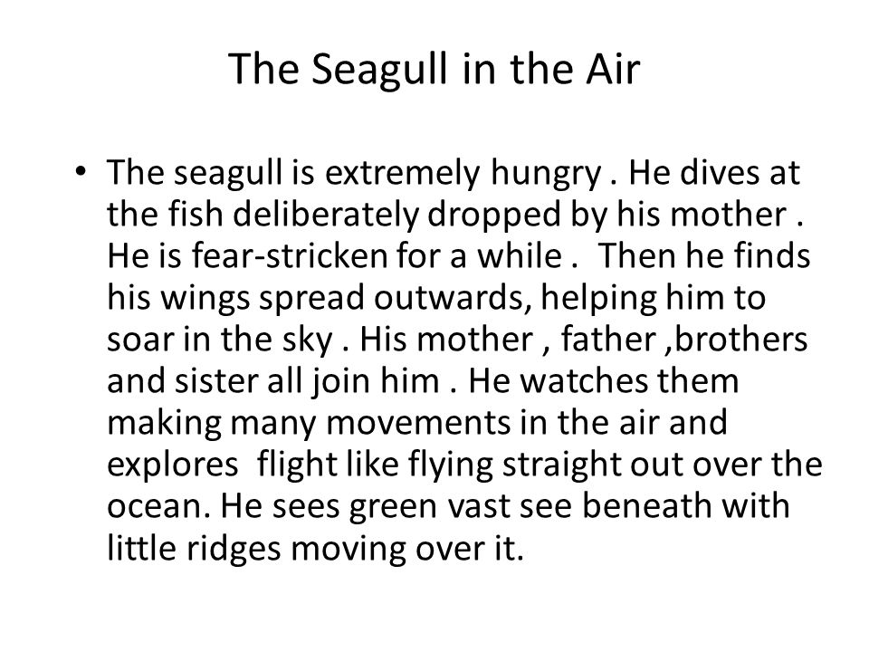 The Seagull in the Air