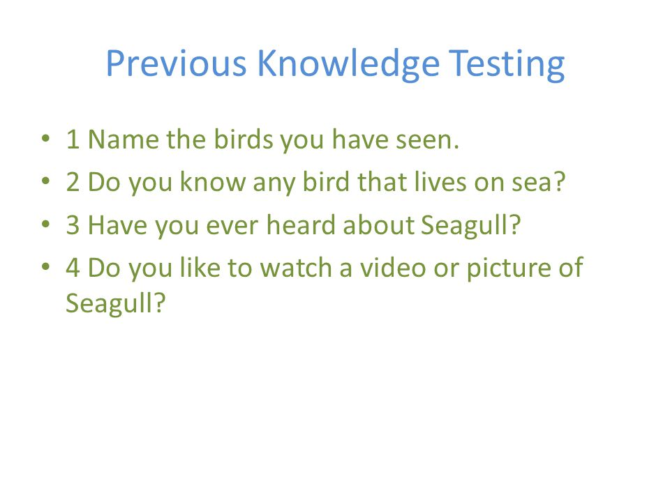 Previous Knowledge Testing