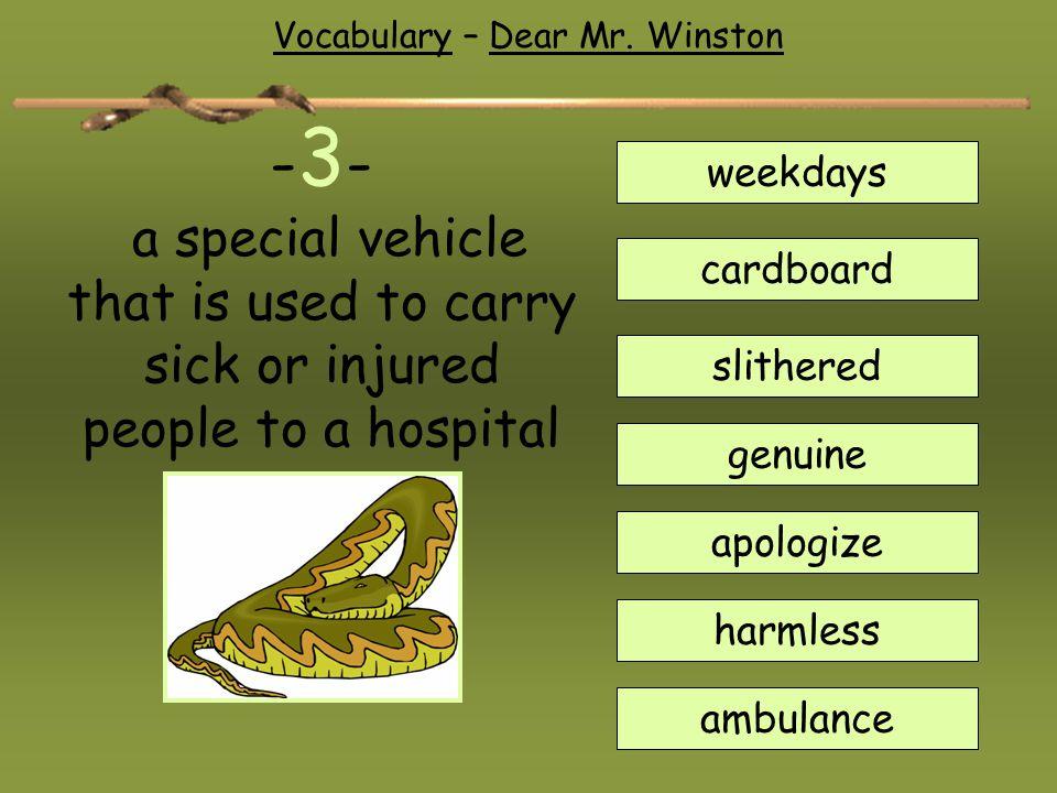 Vocabulary – Dear Mr. Winston